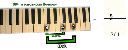 субдоминанта S64