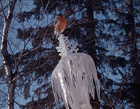 Надо ли жаловаться на жизнь фильм Морозко