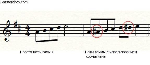 Просто гамма и гамма с хроматическими нотами