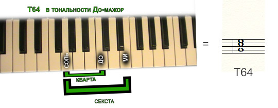 тоника T64